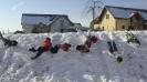 Zimovanje 2012