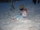 Zimovanje 2006